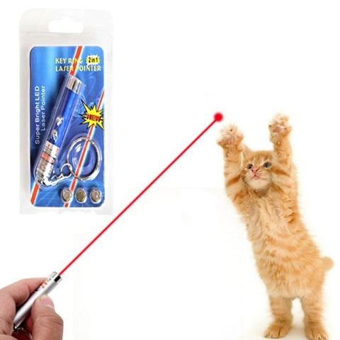 Funny 2 In 1 Super Bright LED Pet Laser Pointer With Key Ring - Blue
