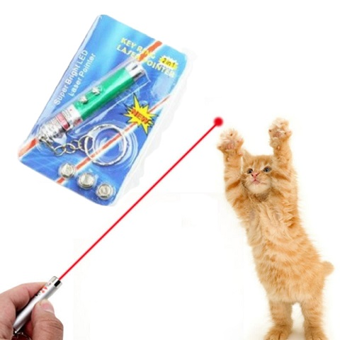 Funny 2 In 1 Super Bright LED Pet Laser Pointer With Key Ring - Green