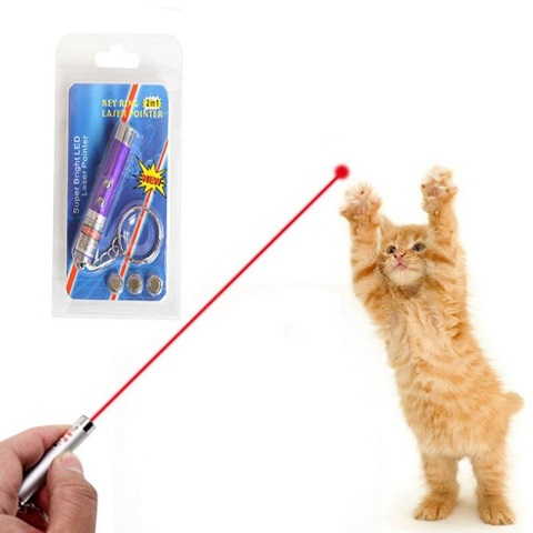 Funny 2 In 1 Super Bright LED Pet Laser Pointer With Key Ring - Purple