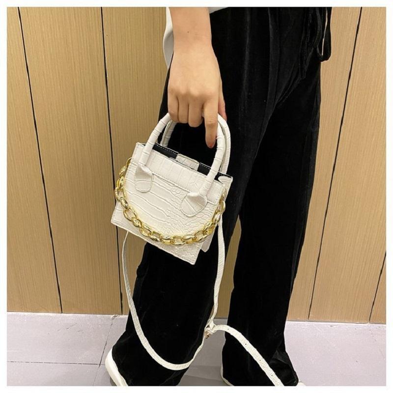 Ladies Mini Vissy Bag With Chain (1001051)