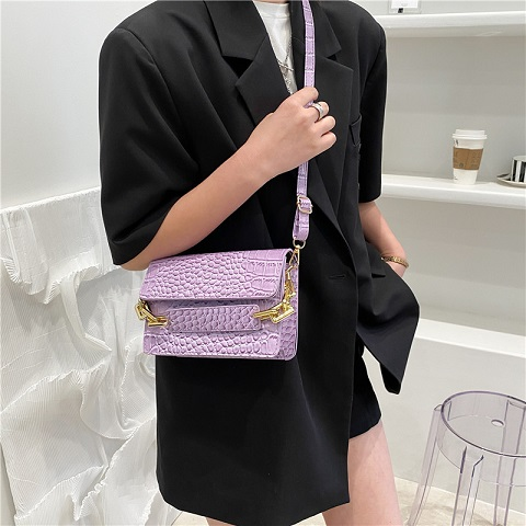 Ladies Trendy Crocodile Pattern Small Bag (1001010)