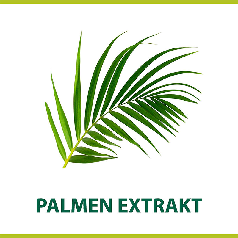 Palmolive Men Classic With Palm Extract Shave Cream 100ml