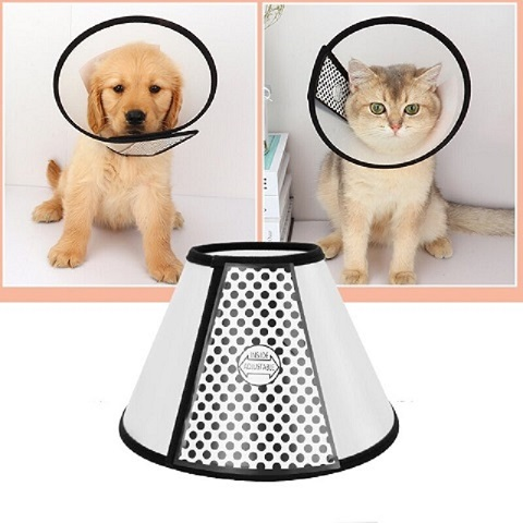 Pet Protection Cover - 6 (20198)