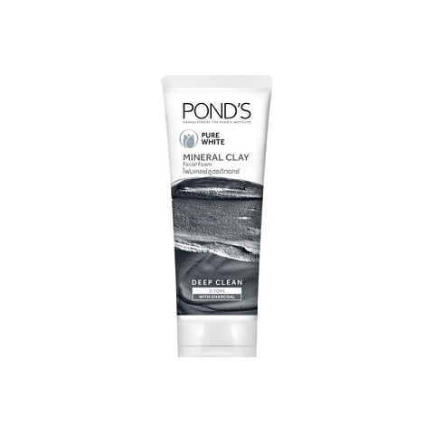Pond's Pure White Mineral Clay Anti Pollution Purity Face Wash Foam 90g